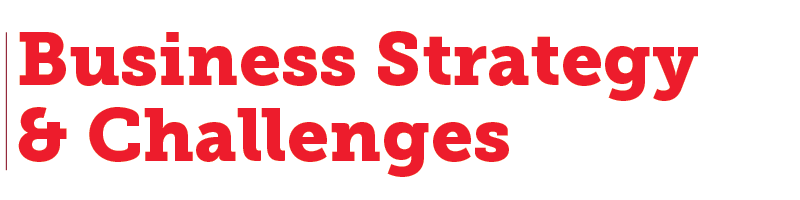 Business Strategy & Challenges Header